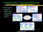 a model of ec consumer behavior