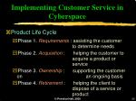 implementing customer service in cyberspace