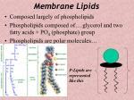 membrane lipids