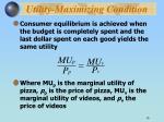 utility maximizing condition