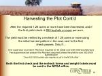 harvesting the plot cont d