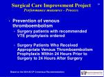 surgical care improvement project performance measures process