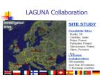laguna collaboration