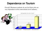 dependence on tourism