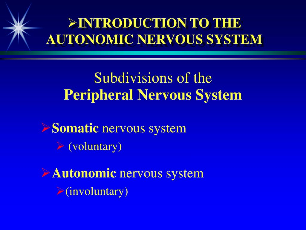 introduction to the autonomic nervous system l.