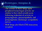 prototypes atropine scopolamine