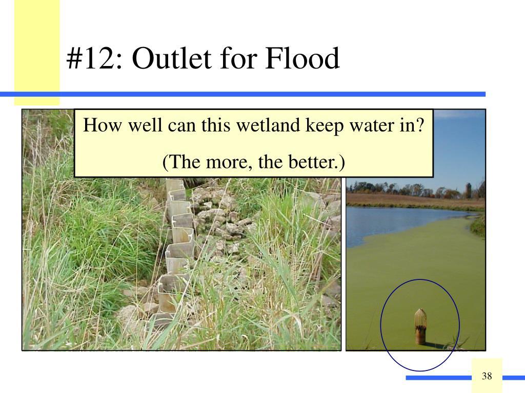 #12: Outlet for Flood