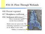 16 18 flow through wetlands