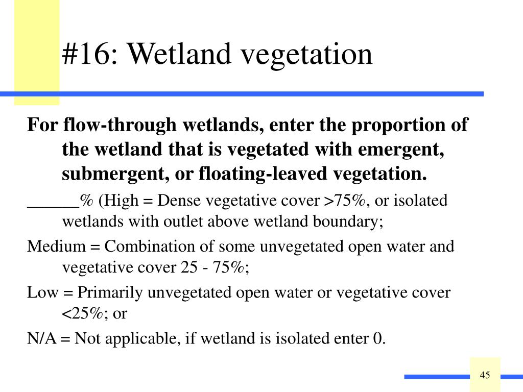 For flow-through wetlands, enter the proportion of the wetland that is vegetated with emergent, submergent, or floating-leaved vegetation.