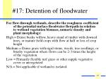 17 detention of floodwater