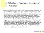 17 guidance floodwater detention of f t wetlands