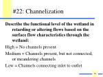 22 channelization