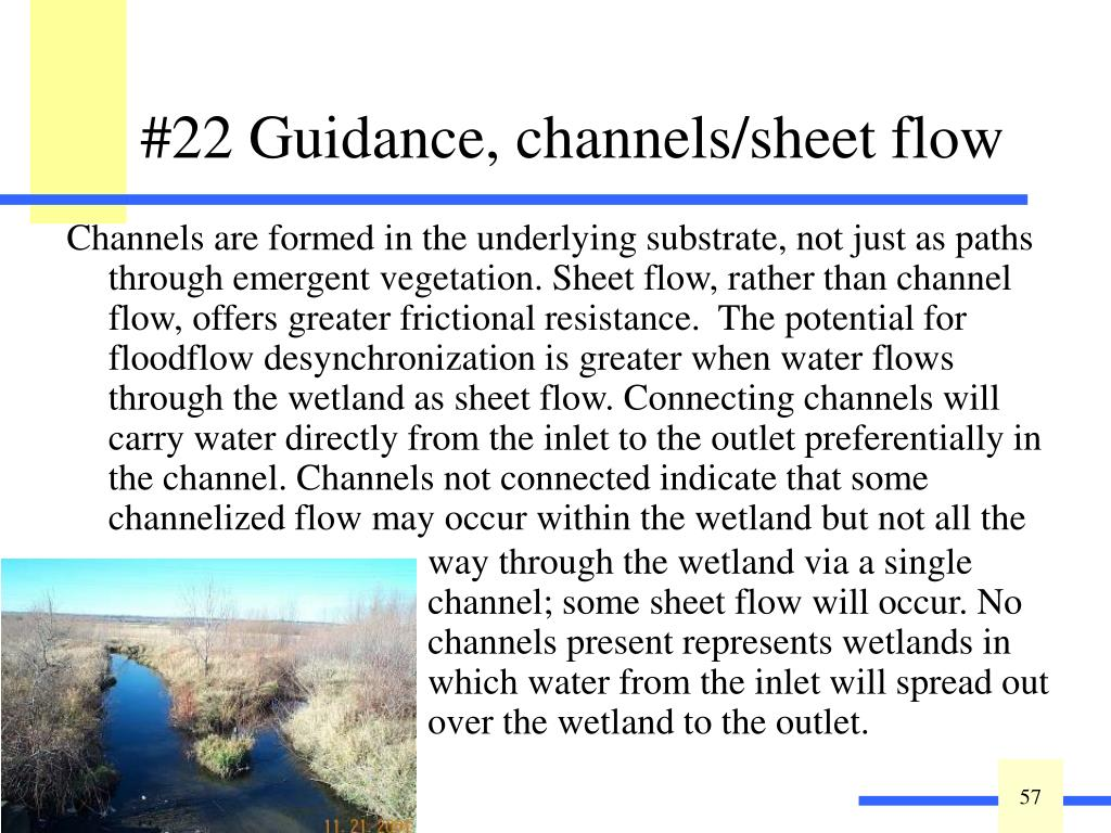 Channels are formed in the underlying substrate, not just as paths through emergent vegetation. Sheet flow, rather than channel flow, offers greater frictional resistance.  The potential for floodflow desynchronization is greater when water flows through the wetland as sheet flow. Connecting channels will carry water directly from the inlet to the outlet preferentially in the channel. Channels not connected indicate that some channelized flow may occur within the wetland but not all the
