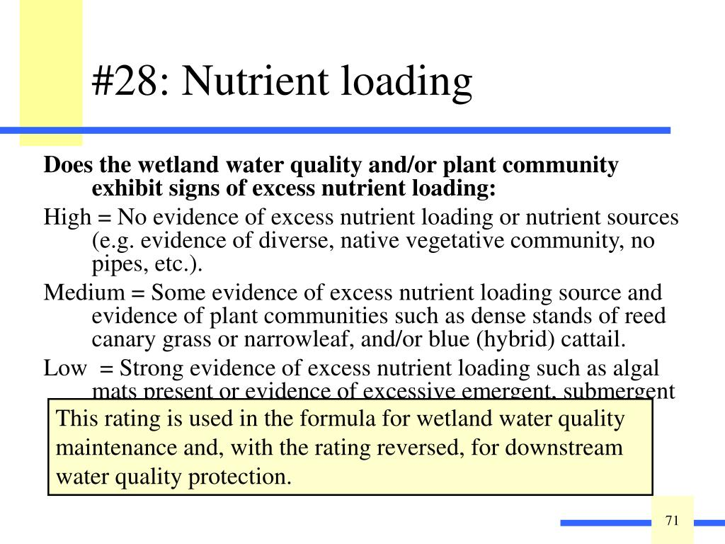 Does the wetland water quality and/or plant community exhibit signs of excess nutrient loading: