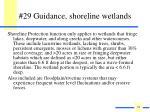 29 guidance shoreline wetlands