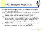 32 emergent vegetation