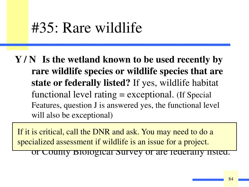 Y / N Is the wetland known to be used recently by rare wildlife species or wildlife species that are state or federally listed?