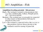 43 amphibian fish
