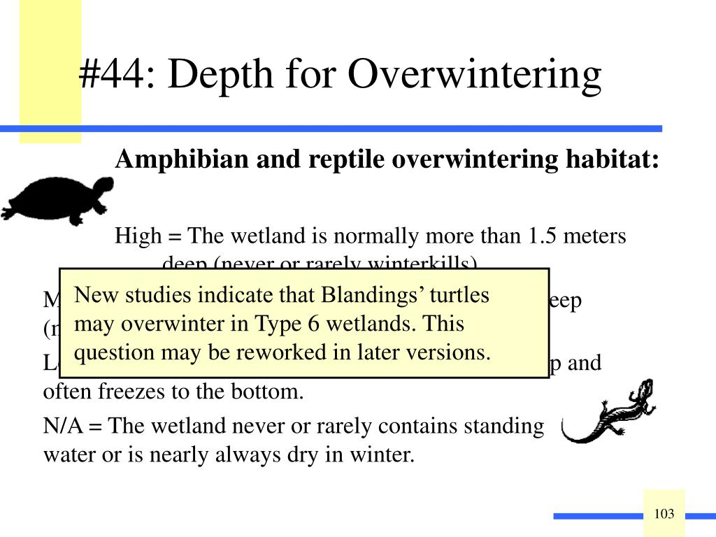 #44: Depth for Overwintering