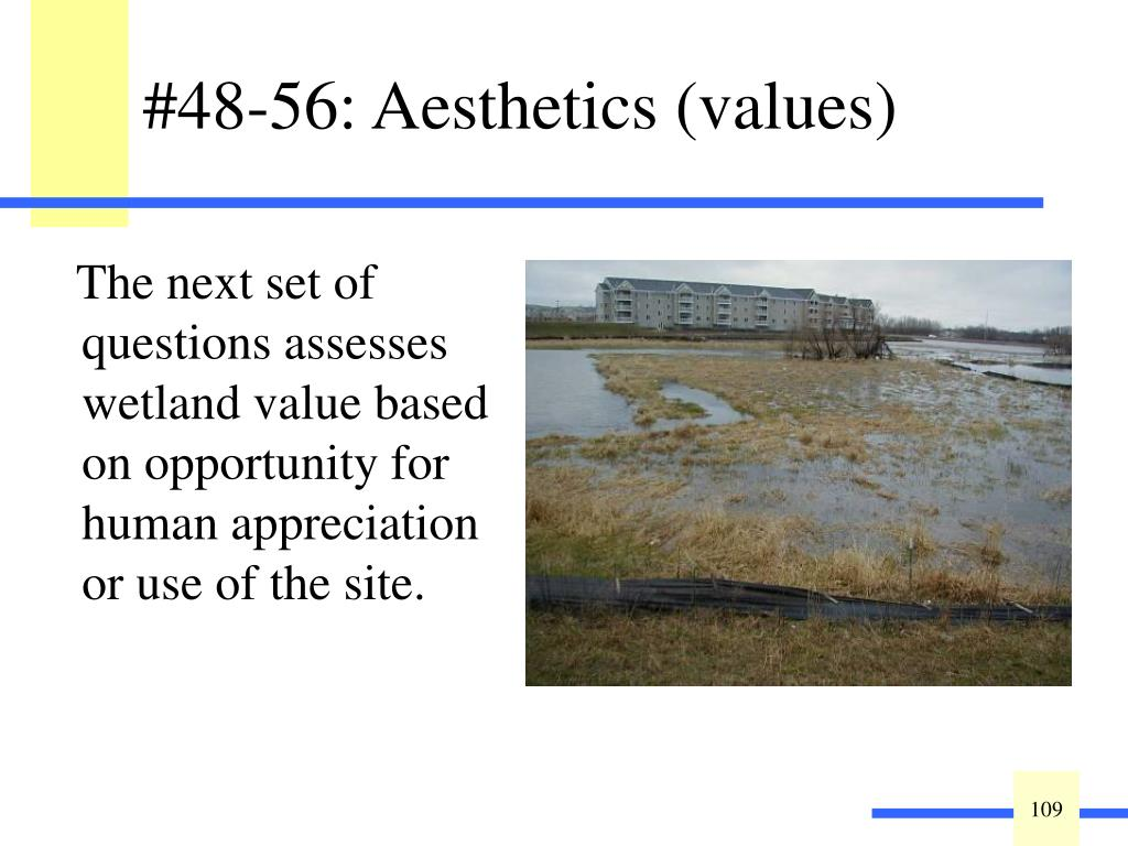 #48-56: Aesthetics (values)