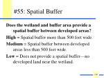 55 spatial buffer