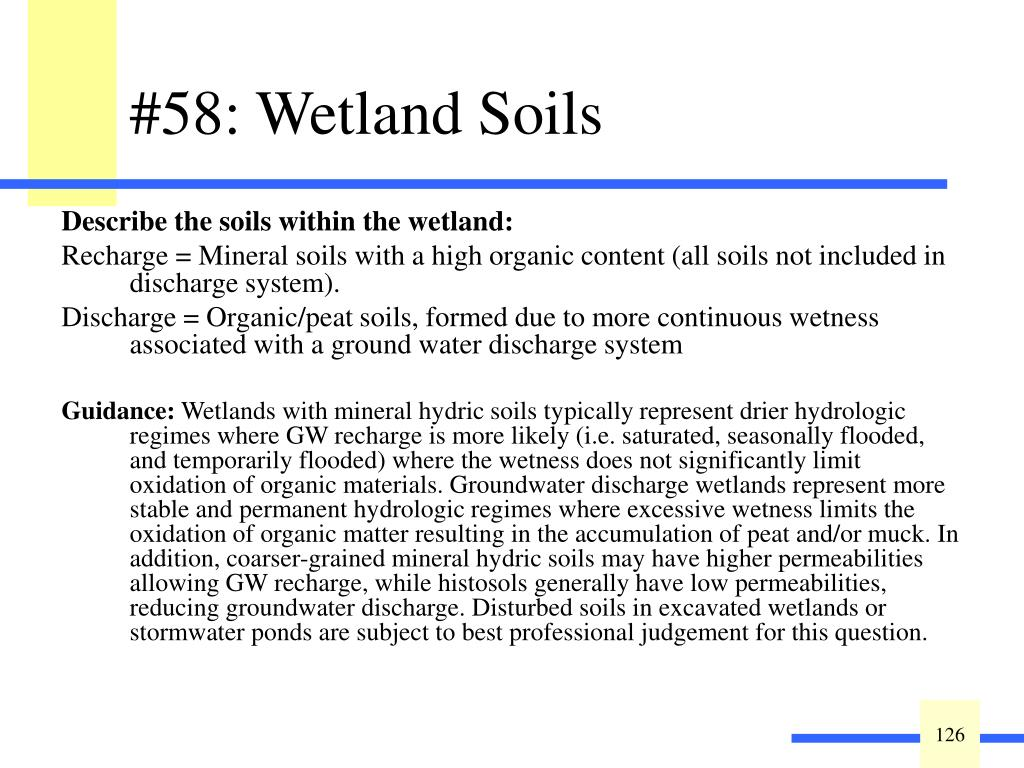 Describe the soils within the wetland: