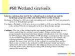 60 wetland size soils