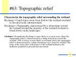 63 topographic relief