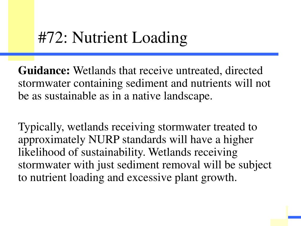 Describe the sustainability of the wetland with regard to stormwater treatment prior to discharge into the wetland.