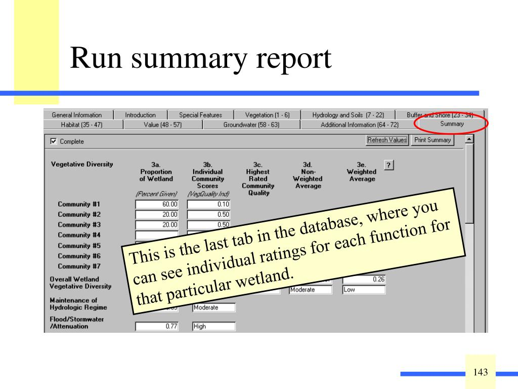 The last tab is the summary report.