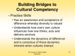 building bridges to cultural competency72