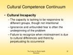 cultural competence continuum20