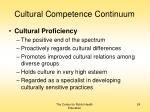 cultural competence continuum24