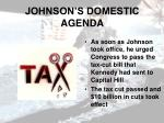 johnson s domestic agenda