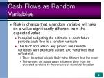 cash flows as random variables