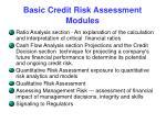 basic credit risk assessment modules