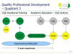 quality professional development quadrant 311
