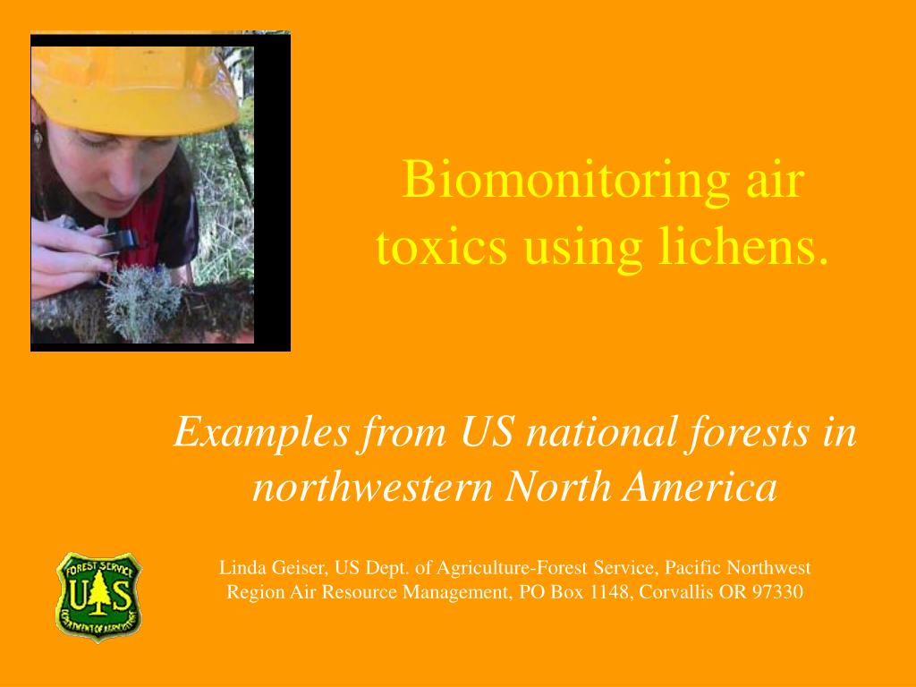 biomonitoring air toxics using lichens l.
