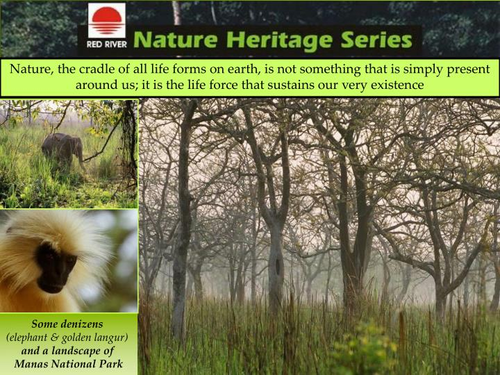 Nature, the cradle of all life forms on earth, is not something that is simply present around us; it...