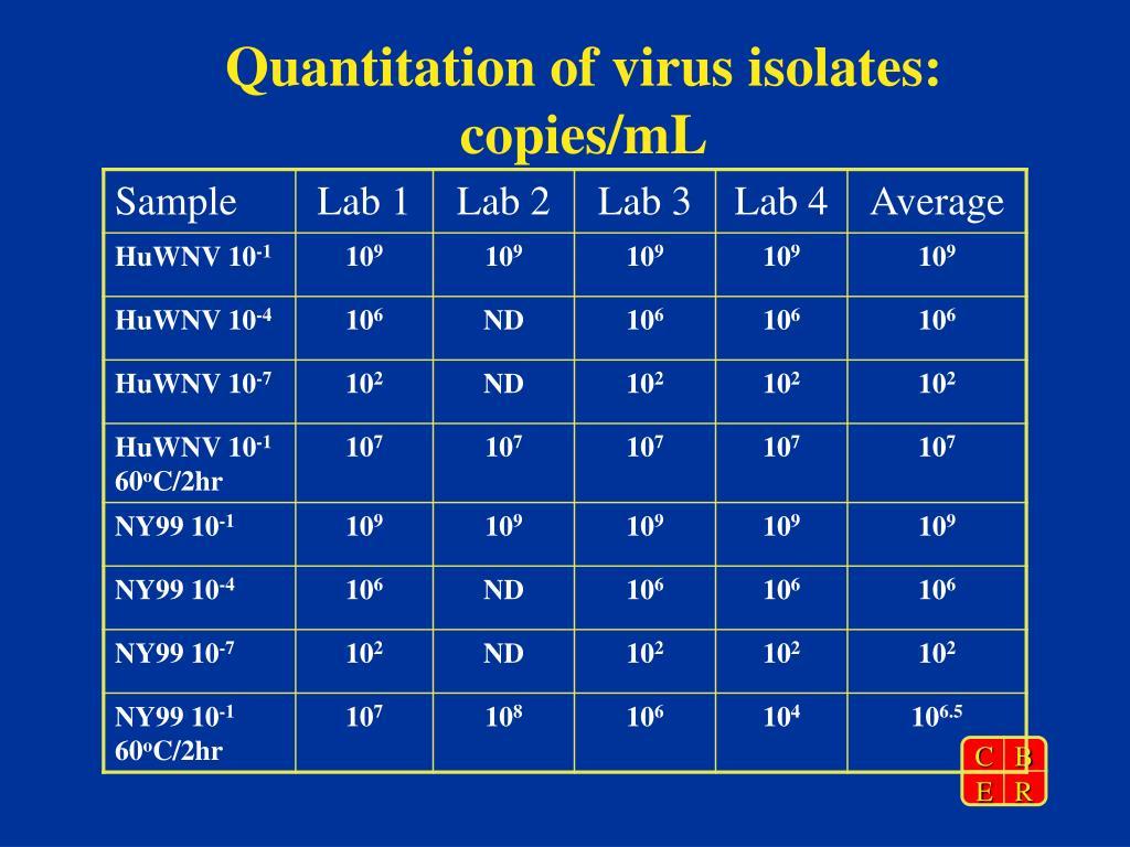 Quantitation of virus isolates: copies/mL