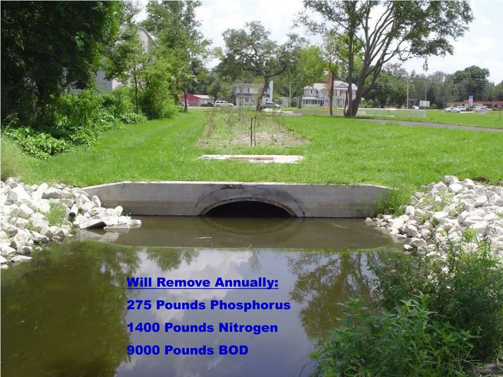 Will Remove Annually: