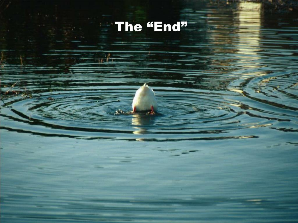 "The ""End"""