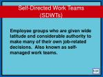 self directed work teams sdwts