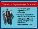 the matrix organizational structure