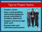 tips for project teams