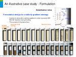 an illustrative case study formulation