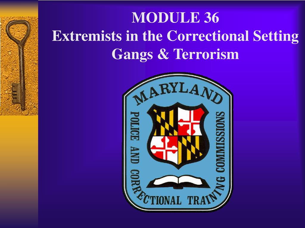 module 36 extremists in the correctional setting gangs terrorism l.