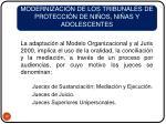 modernizaci n de los tribunales de protecci n de ni os ni as y adolescentes