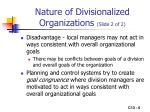 nature of divisionalized organizations slide 2 of 2
