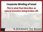 corporate blinding of israel